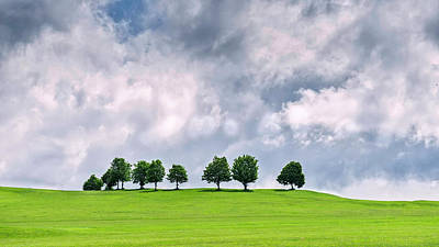 Photograph - Tree Line by Andrew Proudlove