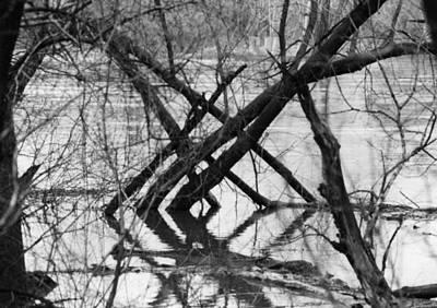 Tree Line Art Print by Cynthia Ann Swan