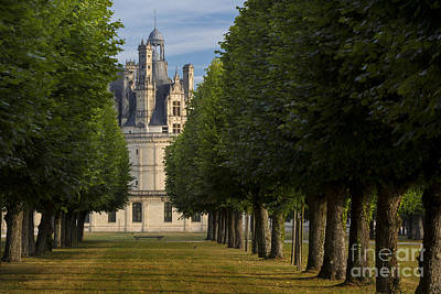Photograph - Tree-lined Chateau by Brian Jannsen