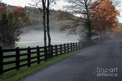 Photograph - Tree Lined Road In The Fog by Linda Mesibov