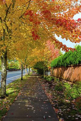 Photograph - Tree Lined Sidewalk In Fall Season by David Gn