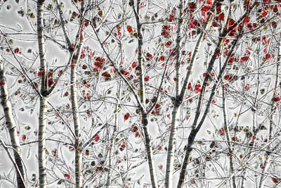 Digital Art - Tree Lines - A44 by Variance Collections