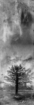 Mixed Media - Tree Mist by Roseanne Jones