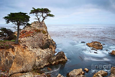 Cliffs Photograph - Tree Of Dreams - Lone Cypress Tree At Pebble Beach In Monterey California by Jamie Pham