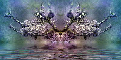 Photograph - Tree Of Dreams by WB Johnston