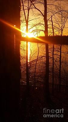 Indiana Winters Digital Art - Tree Of Fire Sunset On Monroe Lake by Scott D Van Osdol