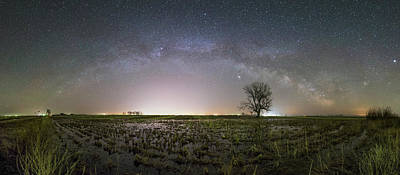 Photograph - Tree Of Huron  by Aaron J Groen