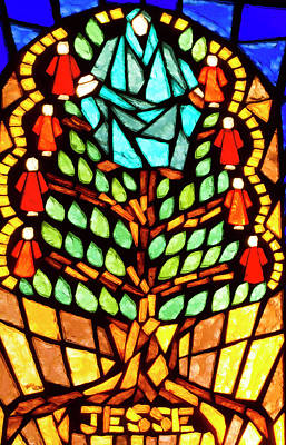 Photograph - Tree Of Jesse Stained Glass by Jean Noren