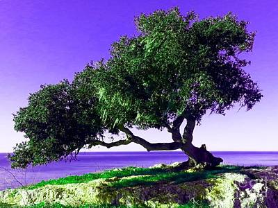 Tree Of Life - 2 Art Print by Tap On Photo