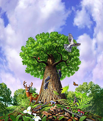 Woodpecker Painting - Tree Of Life by Jerry LoFaro