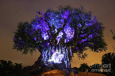 Photograph - Tree Of Life Purple by Erick Schmidt
