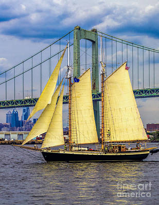 Photograph - Tree Of Life - Tall Ship by Nick Zelinsky