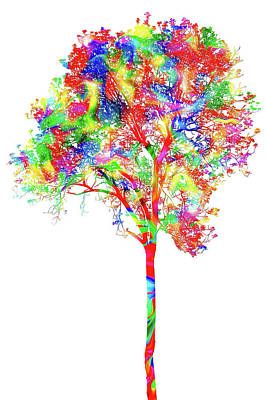 Digital Art - Tree Of Many Colors Ap by Dan Carmichael