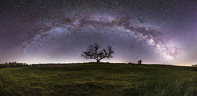 Photograph - Tree Of Serenity  by Aaron J Groen