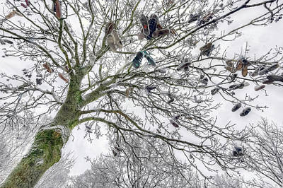 Photograph - Tree Of Shoes by Nadia Sanowar