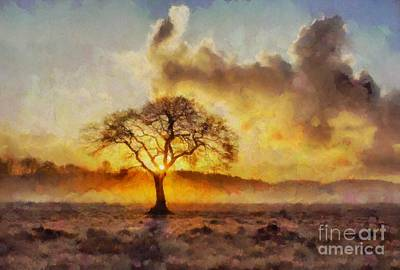 Painted Landscape Painting - Tree Of The Sun By Sarah Kirk by Sarah Kirk