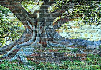 Tree On A Wall Art Print