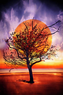 Photograph - Tree On Fire by Debra and Dave Vanderlaan