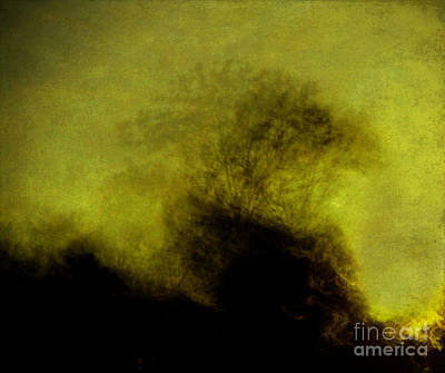 Photograph - Tree On The Hill by Judi Bagwell