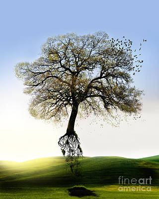 Digital Art - Tree On The Move by Mariella Wassing