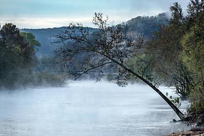 Tree Over Gasconade River Art Print by Jae Mishra