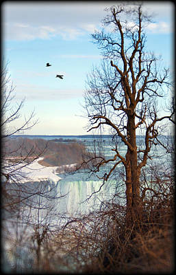 Photograph - Tree Overlooking The Falls by Tammy Wetzel