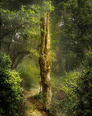 Tree Passing Art Print by Larry Jones