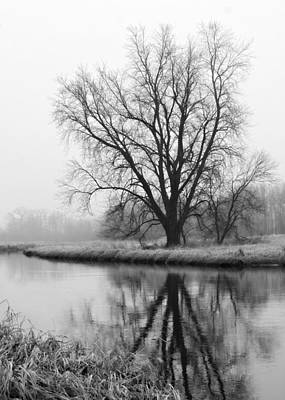 Tree Reflection In The Fox River On A Foggy Day Art Print