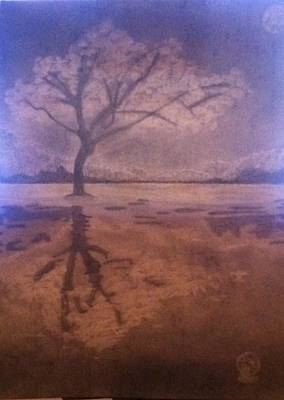 Tree Reflection  Art Print