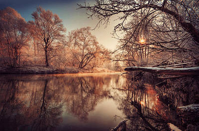 Urban Scenes Photograph - Tree Reflection In River by Philippe Sainte-Laudy Photography