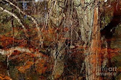 Gangi Photograph - Tree Reflection On Cedar Swamp by Linda Gangi