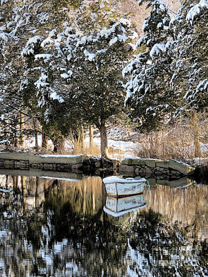 Photograph - Tree Reflections  by Janice Drew
