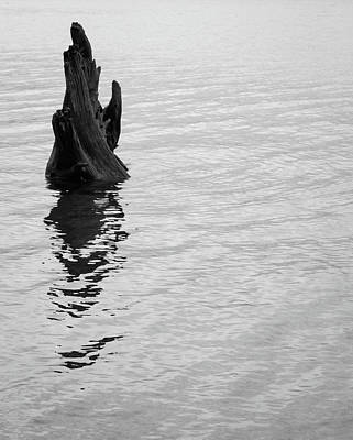 Tree Reflections, Rest In The Water Art Print