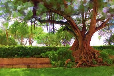 Photograph - Tree Series 56 by Carlos Diaz