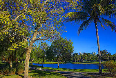 Photograph - Park Vista Series 74 by Carlos Diaz