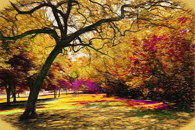 Photograph - Park Vista 81 - Tree Series 81 by Carlos Diaz