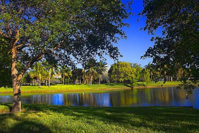 Photograph - Park Vista 82 - Tree Series 82 by Carlos Diaz