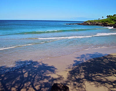 Tree Shadows At Hapuna Beach Art Print