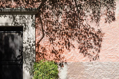Photograph - Tree Shadows On Stucco. by Rob Huntley