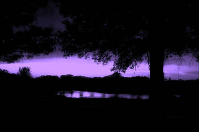 Tree Silhouette By The Pond Purple Art Print by Thomas Woolworth