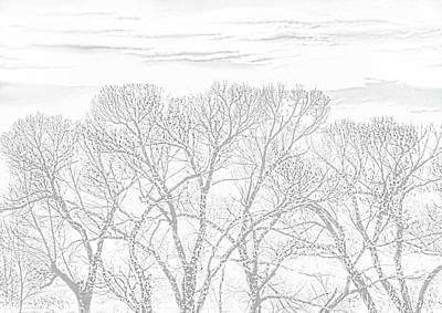 Art Print featuring the photograph Tree Silhouette Gray by Jennie Marie Schell