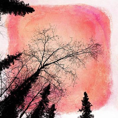 Tree Silhouettes I Art Print