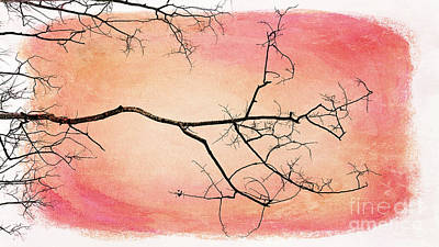 tree silhouettes III Art Print