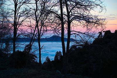 Background Photograph - Tree Silhouettes On Troodos 2 by Iordanis Pallikaras