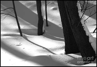 Tree Snow Shadows Original by Rhea Malinofsky