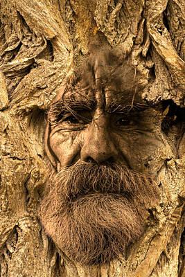 Digital Art - Tree Spirit by Lisa Yount
