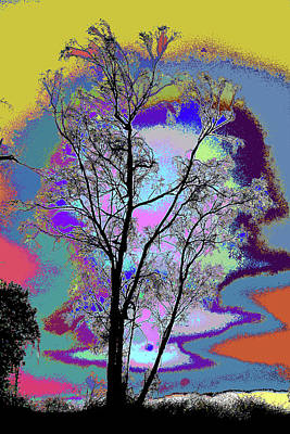 Photograph - Tree - Story Of Life by Kenneth James