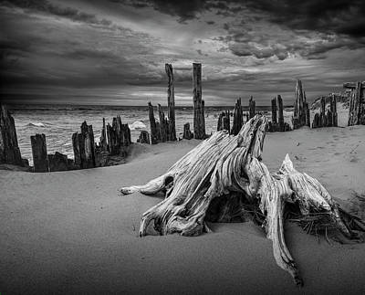 Photograph - Tree Stump And Pilings On The Beach In Black And White by Randall Nyhof