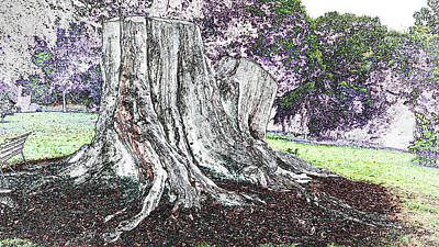 Photograph - Tree Stump In The Park by Nareeta Martin