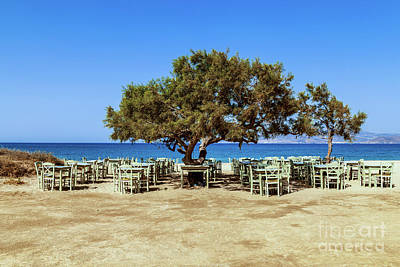 Photograph - Tree Tavern by Antonis Androulakis